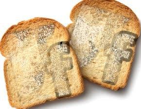 facebook-toast-chametz-passover